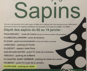OPERATION BROYAGE DE SAPINS